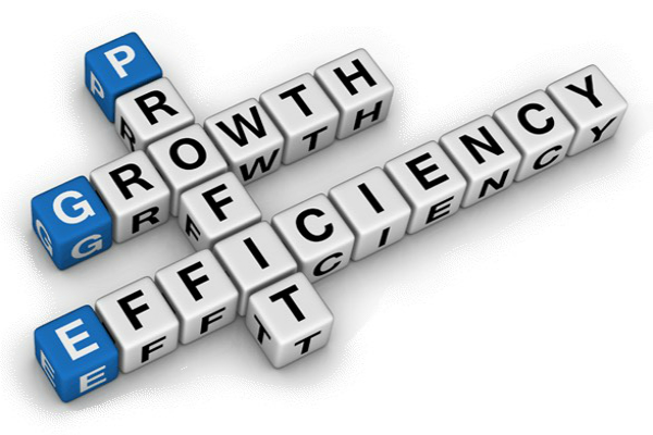 Enhance Technical Efficiency to Increase Profits